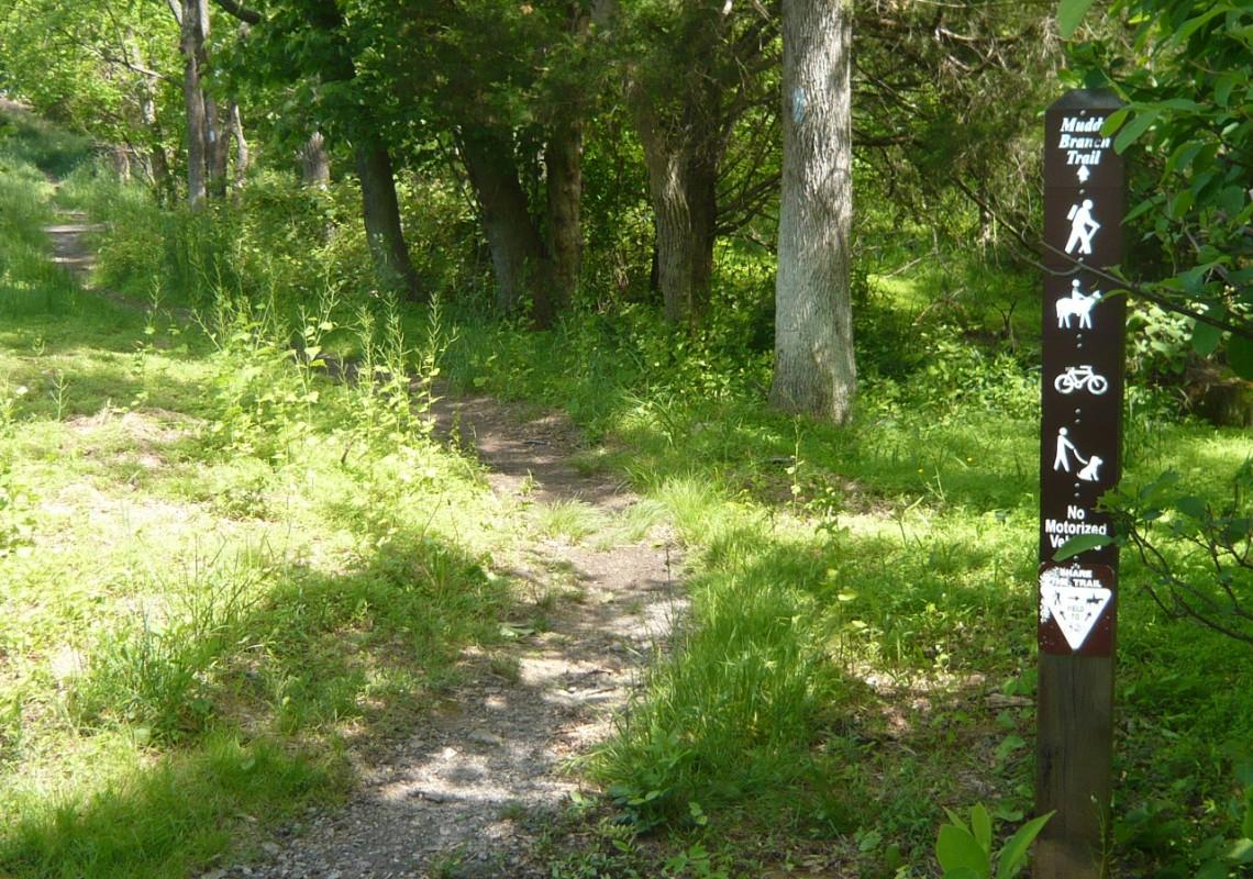 Beginning of Greenway Trail off Darnestown Rd.