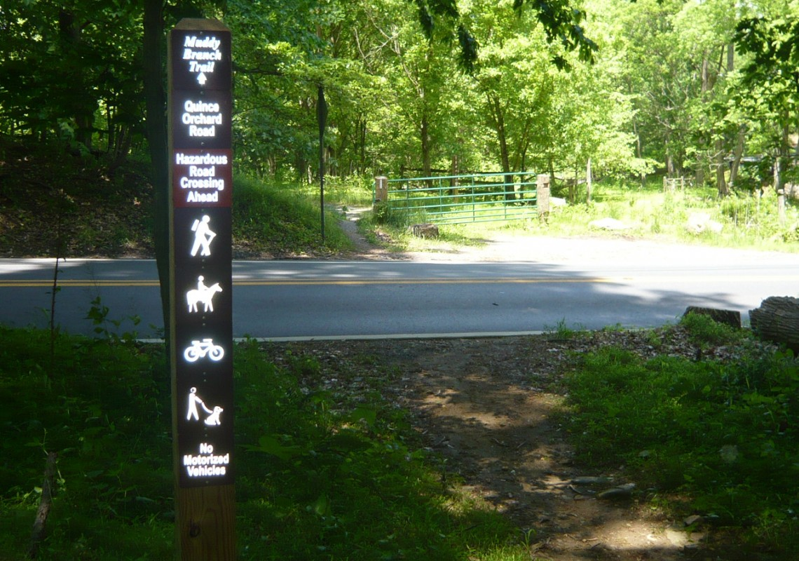 Trail crossing Quince Orchard Rd near Horse Center
