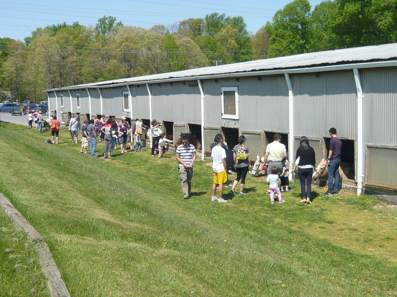 Potomac Horse Center North Potomac Citizens Association